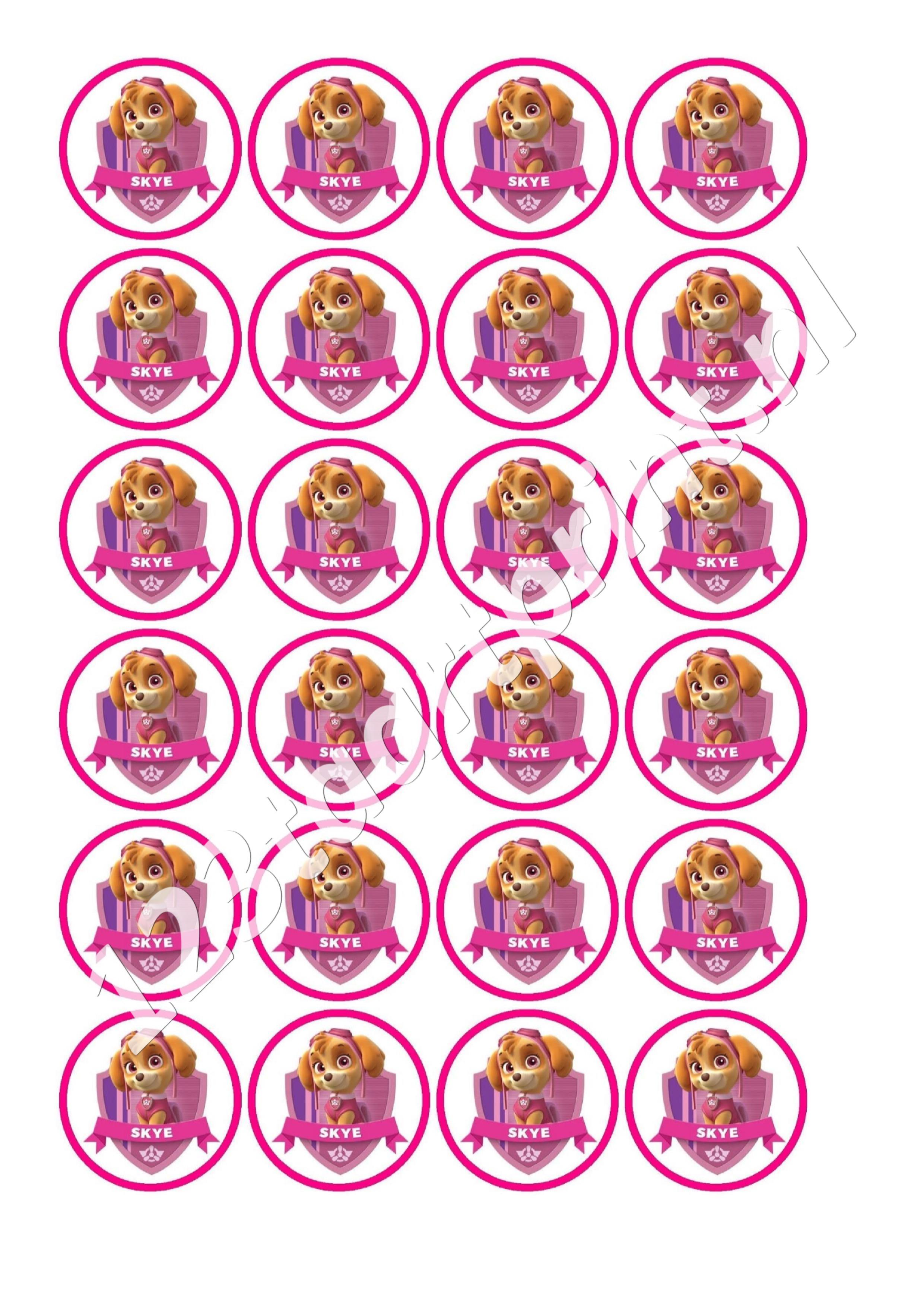 Paw Patrol Skye 4 cupcakes