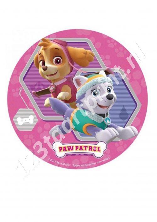 Paw Patrol Rond 5