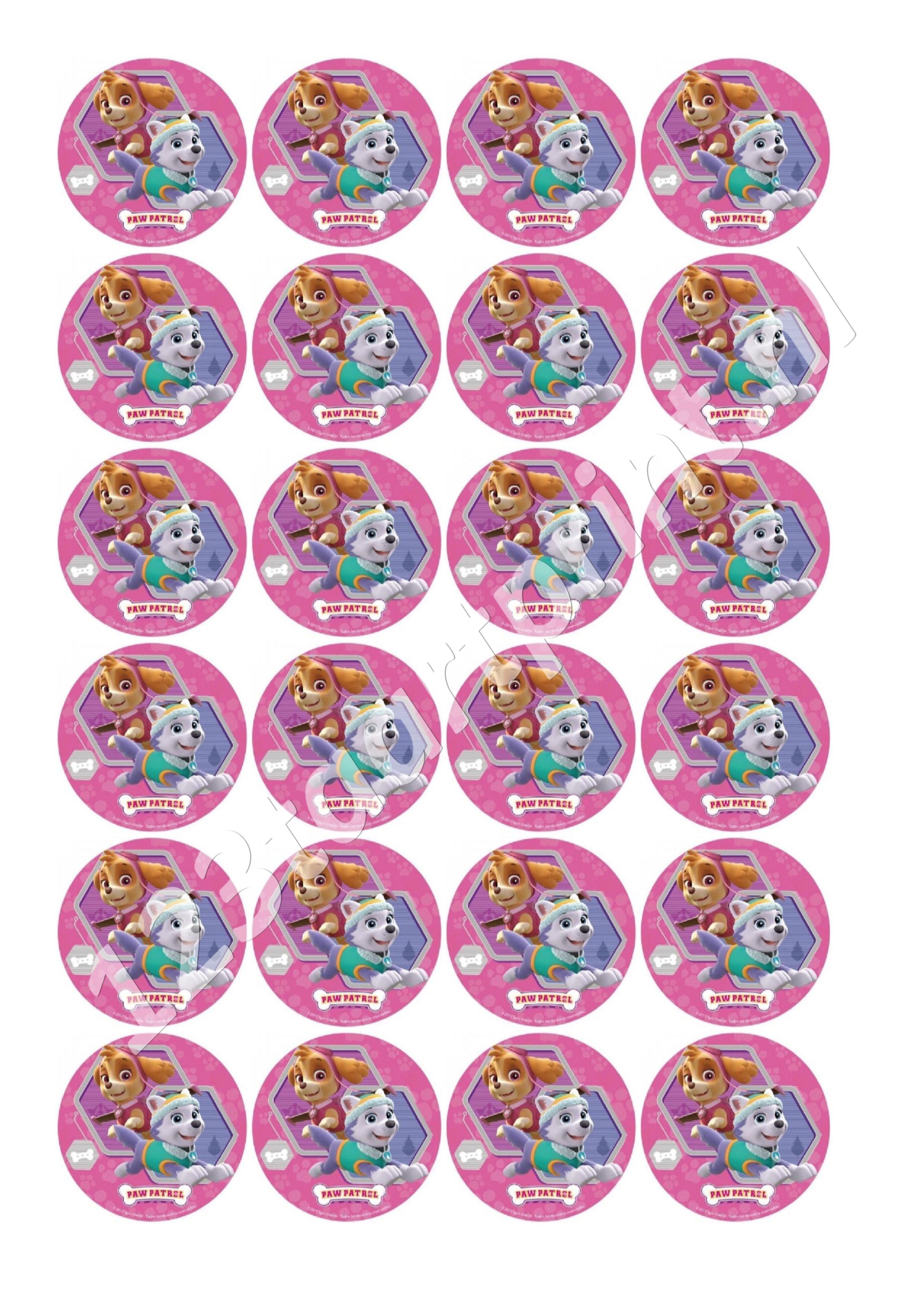 Paw Patrol Rond 5 cupcakes