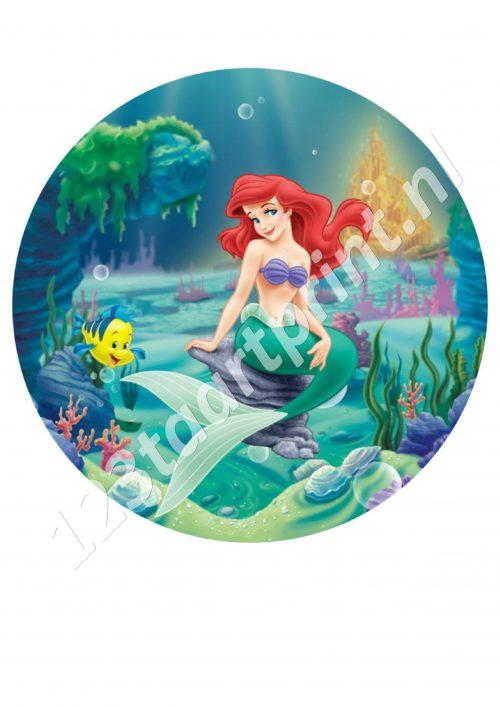 Ariel 4 Rond