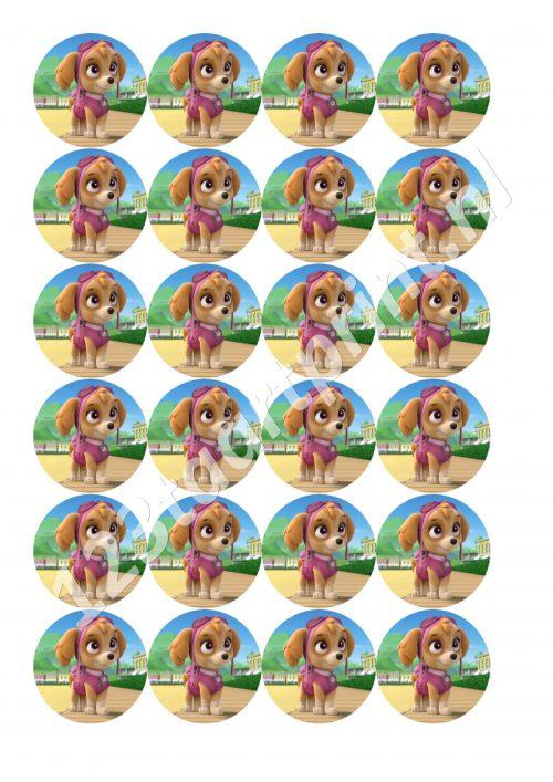 paw patrol Skye 5 cupcakes