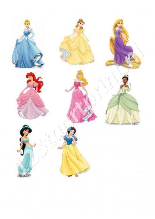 Disney Prinsessen toppers 2