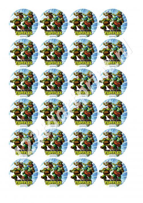Ninja Turtles Rond 1 cupcakes