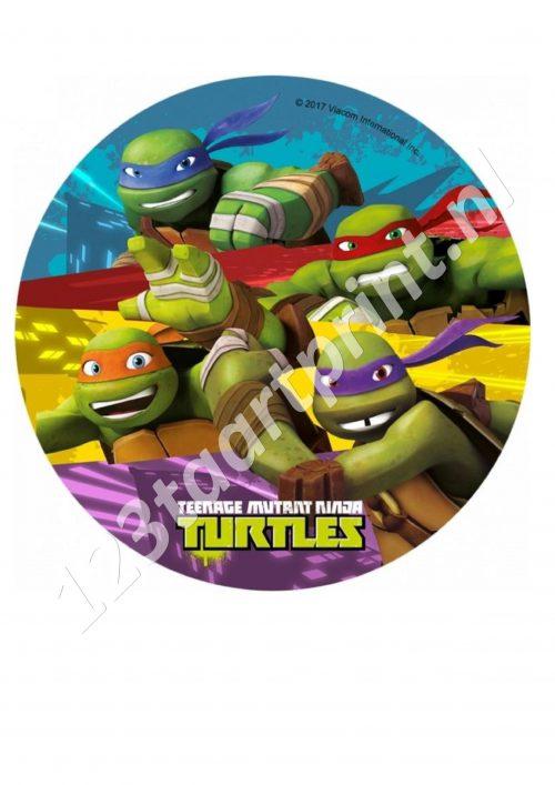 Ninja Turtles Rond 2