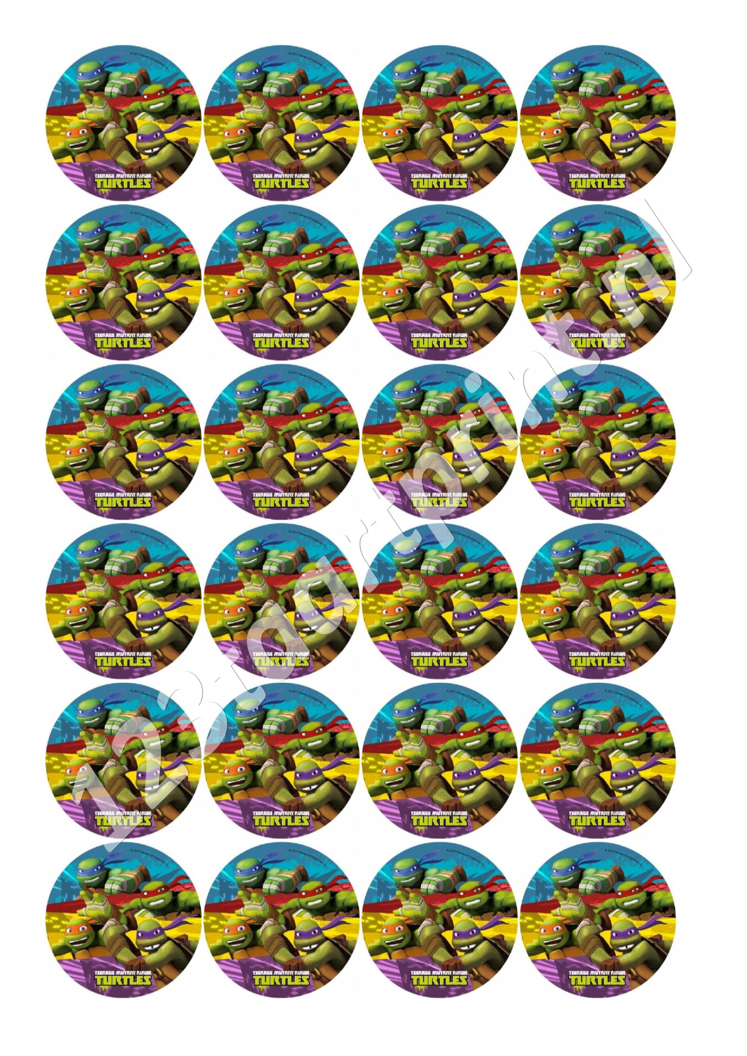Ninja Turtles Rond 2 cupcakes