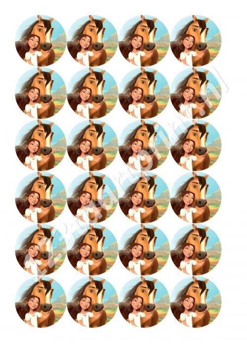 Spirit Rond cupcakes