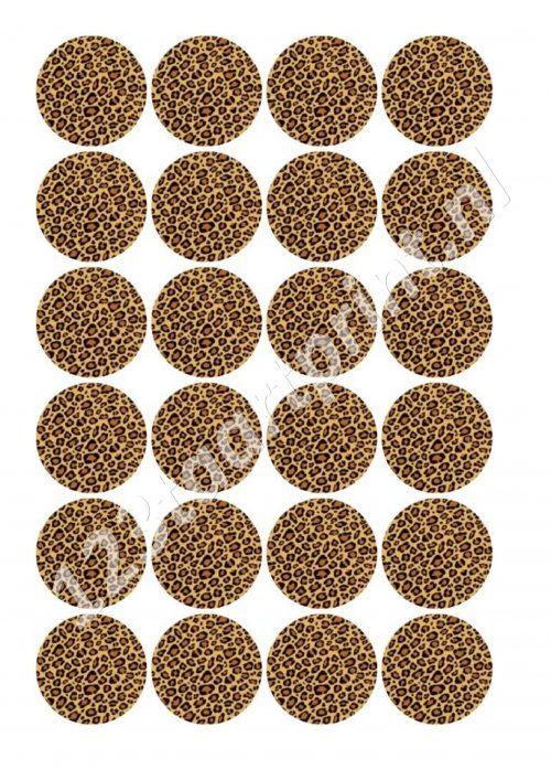 Luipaard cucpakes