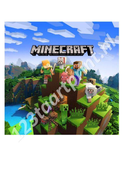 Minecraft 2 Vierkant